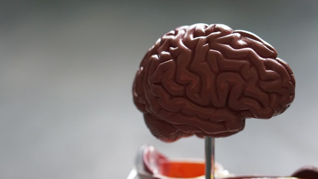 demencia wernicke korsakoff